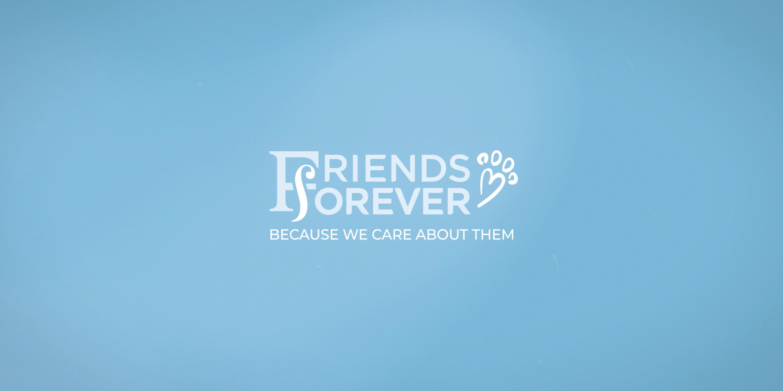 Amazon com: Friends Forever