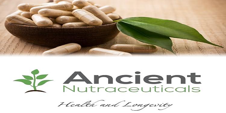 Amazon com: Ancient Nutraceuticals