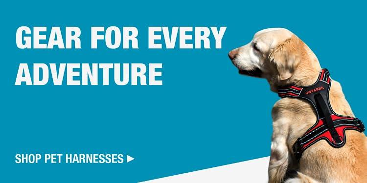 Amazon com: Best Pet Supplies, Inc