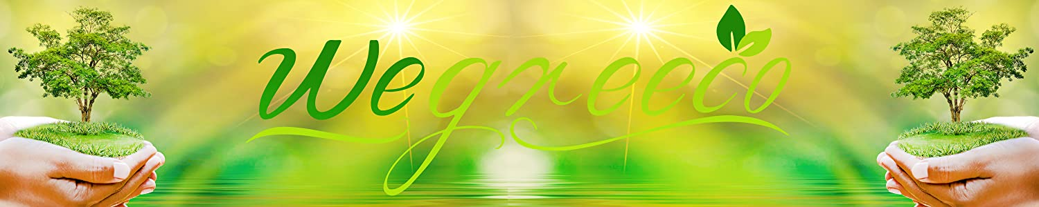 wegreeco header