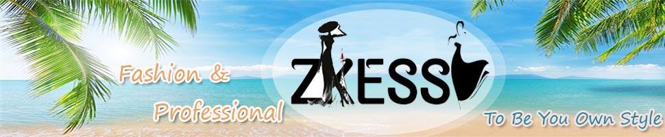 ZKESS image