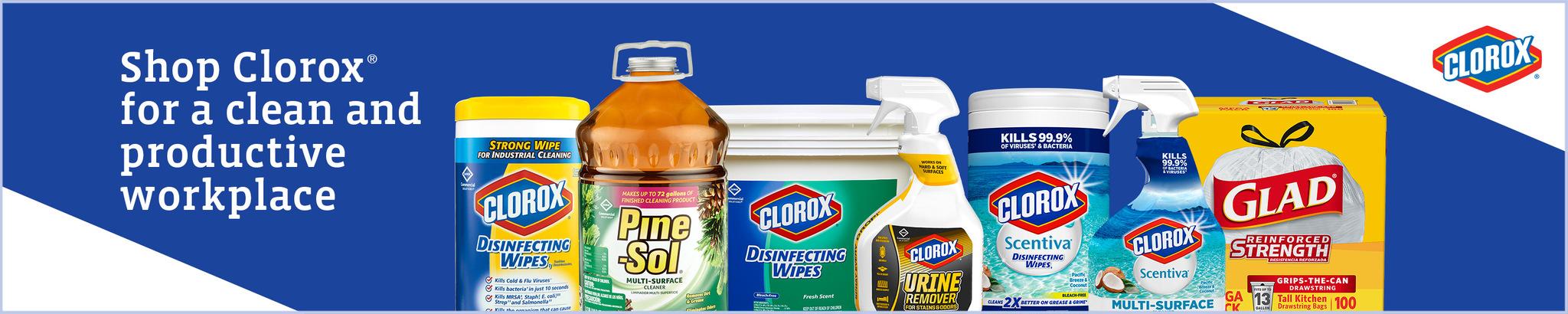 Amazon.com: Clorox Professional Products Company: Cleaners & Disinfectants