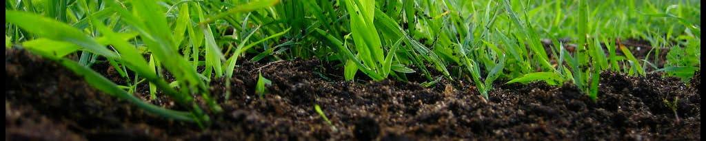 Earthworm Technologies image