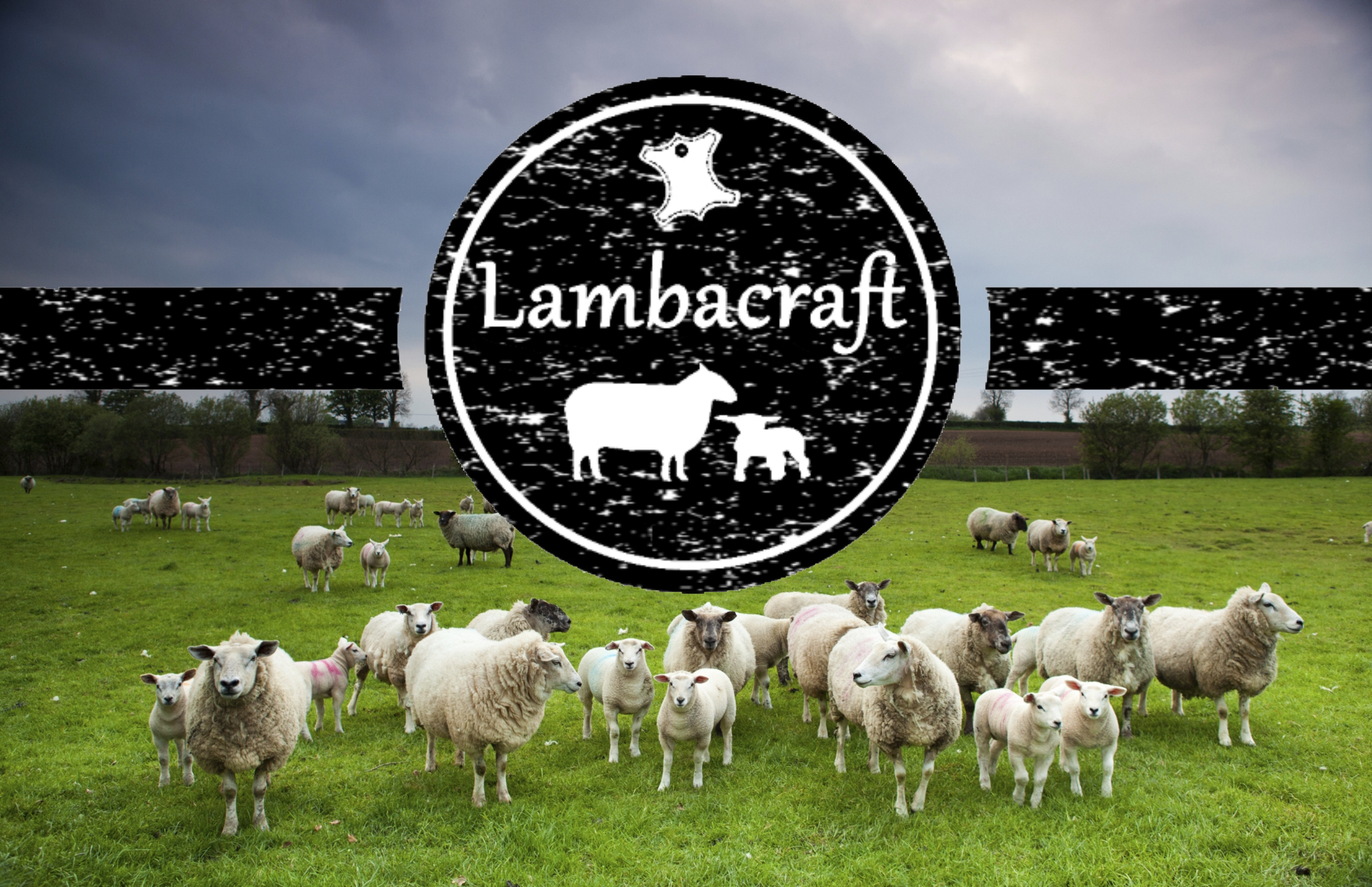 Lambacraft Sheep DesignLove Ewe to The Moon and Back Text Anniversary/Valentine/Birthday Greeting Card with Blank Inside1 Units Cards & Card Stock Greeting Cards