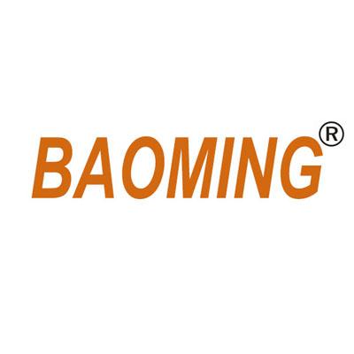Imagini pentru baoming logo