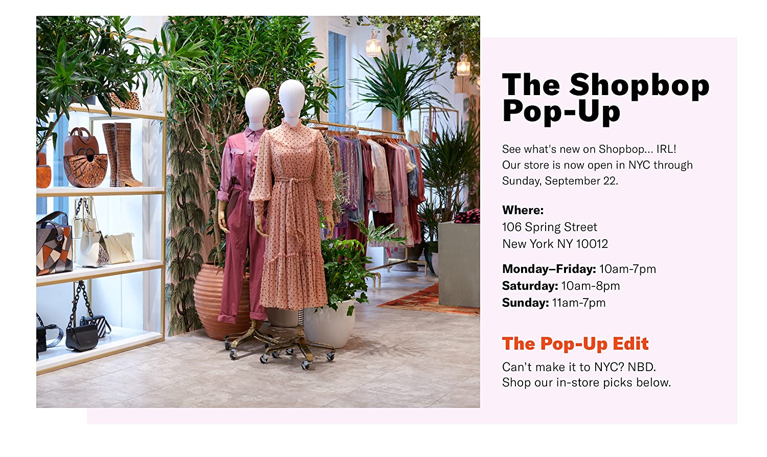 Amazon Com The Shop By Shopbop The Shopbop Pop Up