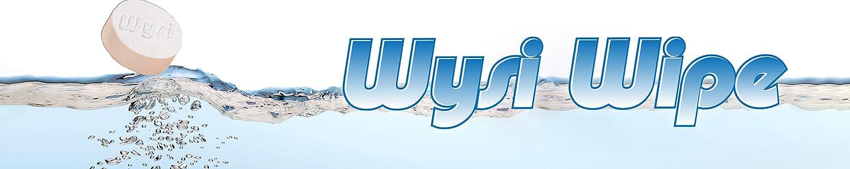 WYSI image