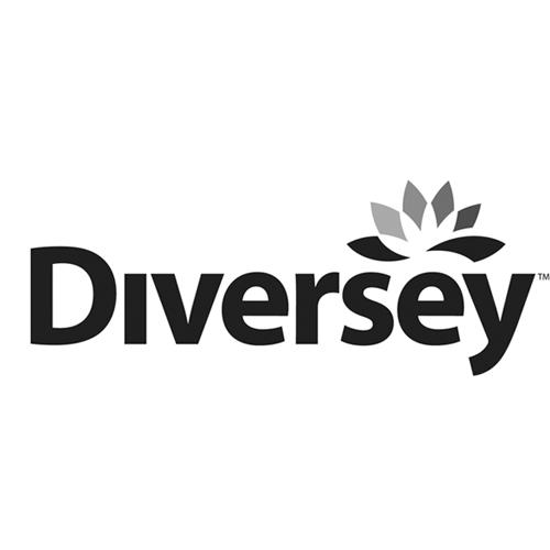 Amazon.com: Diversey: Break-Up