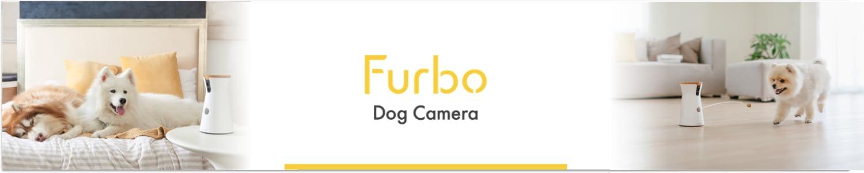 Furbo header
