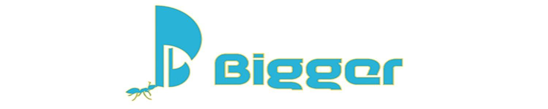 Bigger image