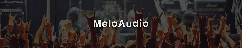 MeloAudio image