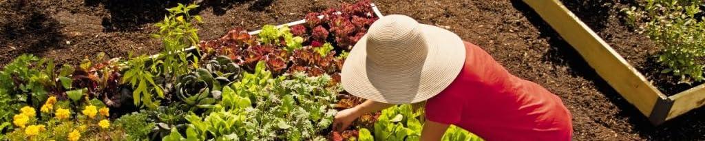 Gardener's Supply Company image