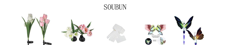 SOUBUN image