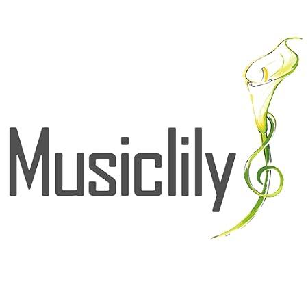 Amazon.co.jp_ Musiclily_ Musiclily Pro