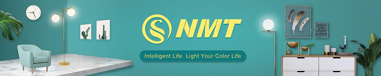 S NMT header