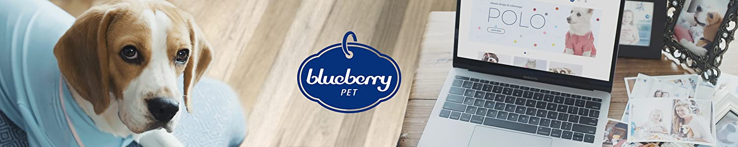 Blueberry Pet image