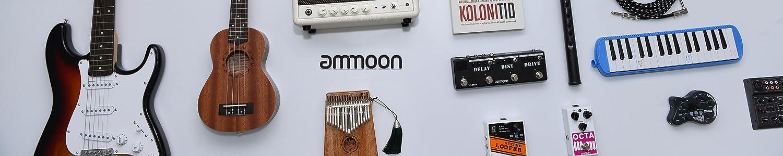 ammoon image