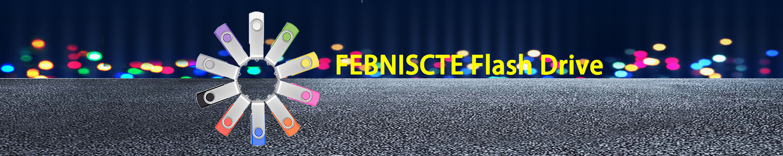 FEBNISCTE header