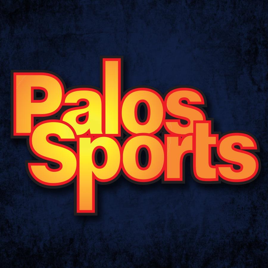 Amazon.com: Palos Sports