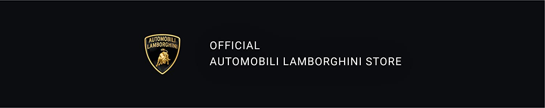 Automobili Lamborghini image