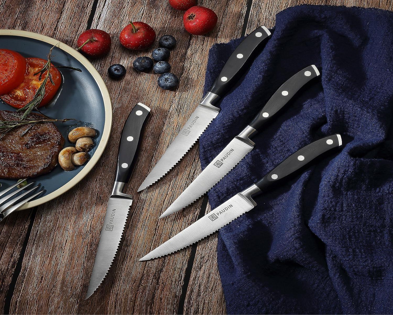 Amazon.com: PAUDIN: Steak knife set