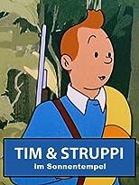 Tim und Struppi im Sonnentempel
