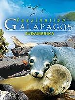 Faszination Südamerika: Galapagos 3D