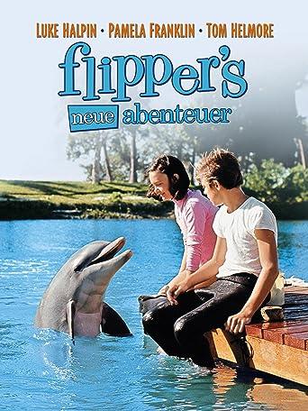 Neues Abenteuer mit Flipper