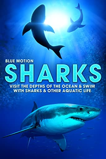 Sharks: Visit the Depths of the Ocean & Swim with Sharks & Other Aquatic Life (Blue Motion) [OV/OmU]