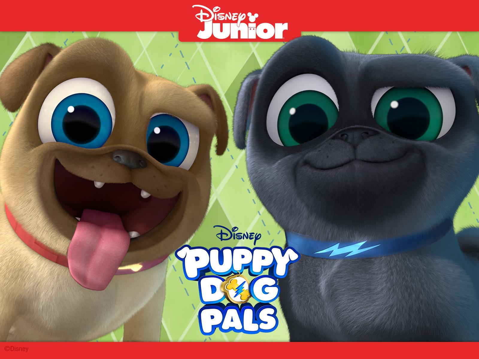 Watch Puppy Dog Pals Episodes On Disney Junior Season 1 2019