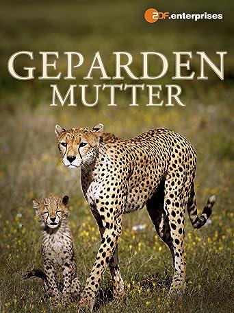 Gepardenmutter