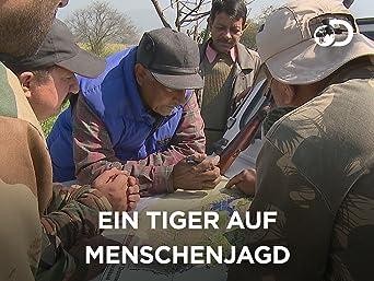 Ein Tiger auf Menschenjagd