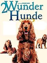 2 Wunder Hunde - Das Märchen geht weiter [dt./OV]