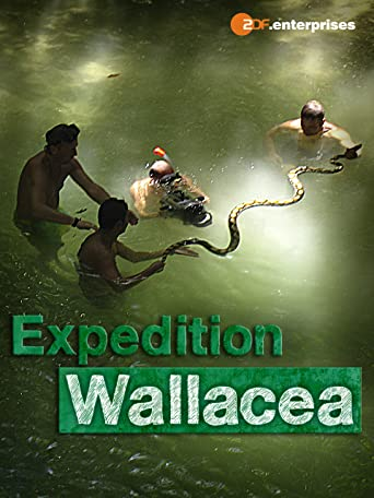 Wallacea - Expedition zur Wiege der Meeresfauna