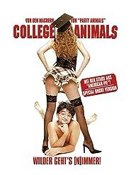 College Animals