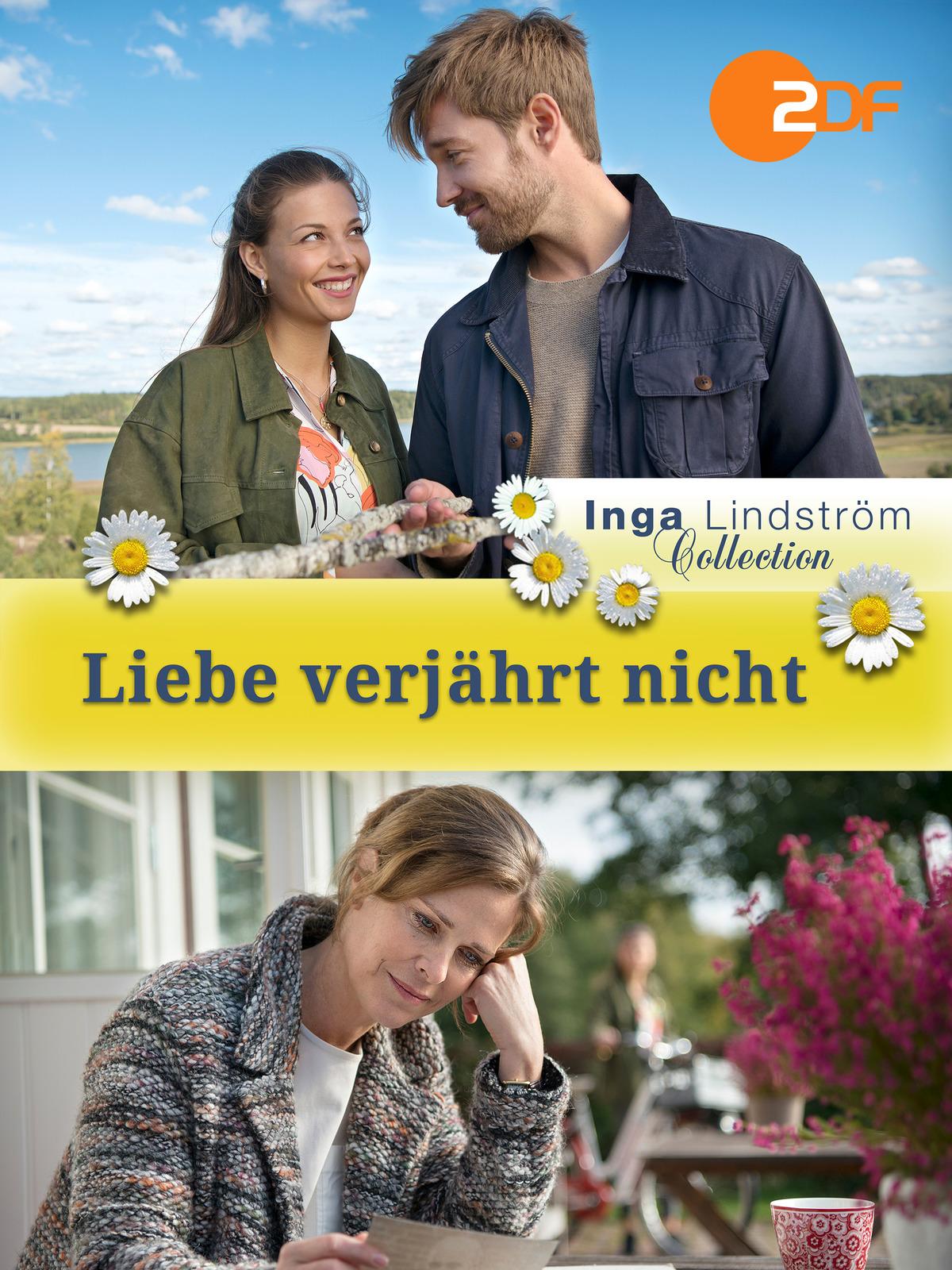 Inga Lindström - Liebe verjährt nicht