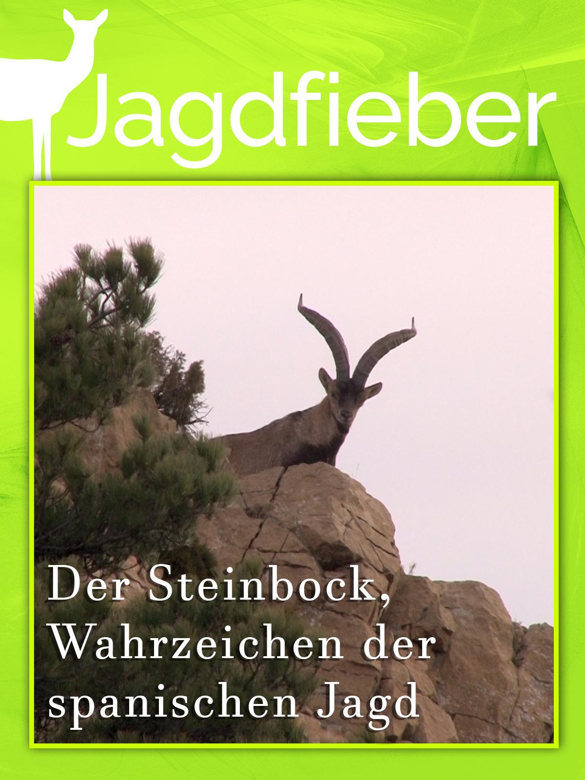 Der Steinbock, Wahrzeichen der spanischen Jagd