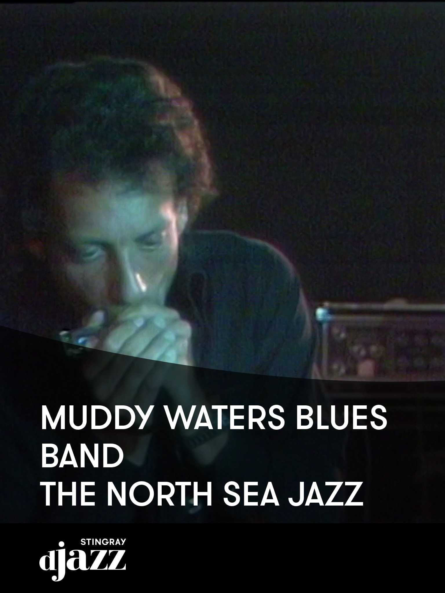 Muddy Waters Blues Band - The North Sea Jazz