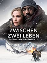 Zwischen zwei Leben - The Mountain between us