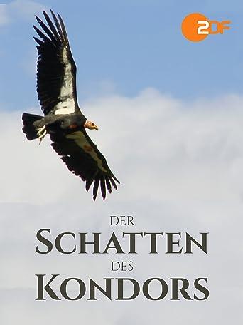 Der Schatten des Kondors