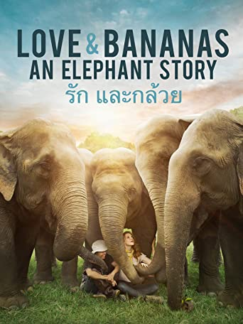 Love & Bananas - An Elephant Story