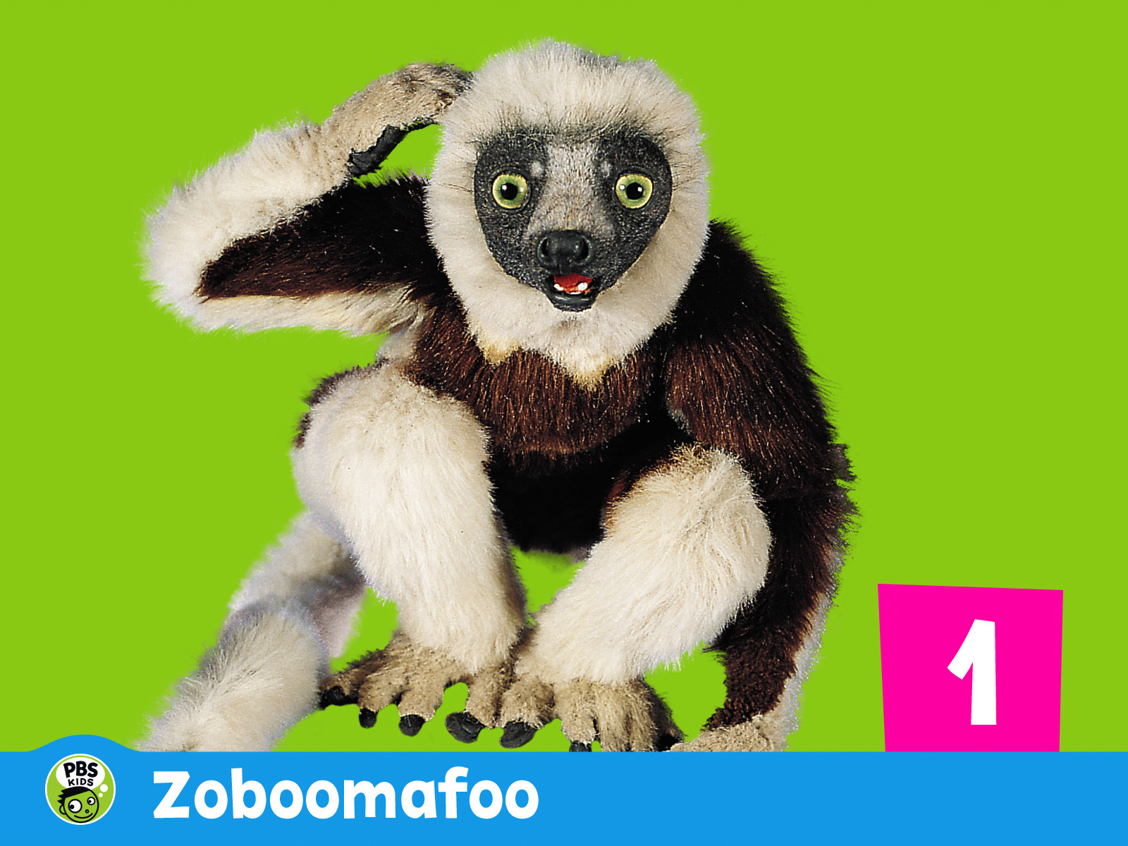 Watch Zoboomafoo Episodes On Pbs Season 1 2016 Tv Guide