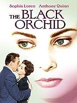 Die schwarze Orchidee