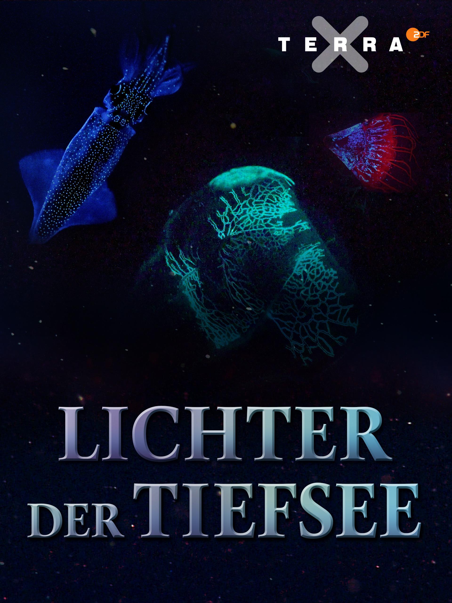 Lichter der Tiefsee