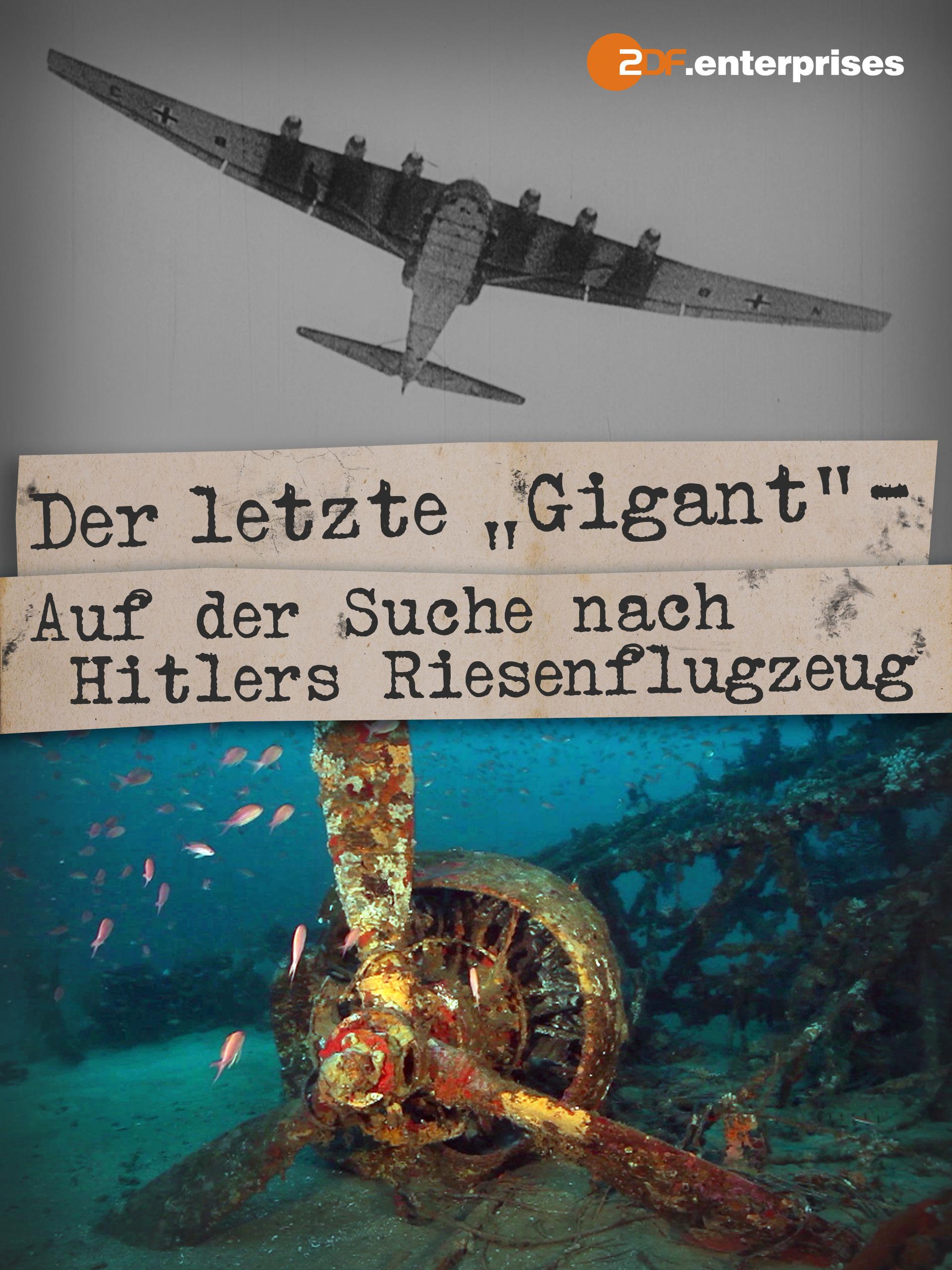 """Der letzte """"Gigant"""" - Auf der Suche nach Hitlers Riesenflugzeug"""