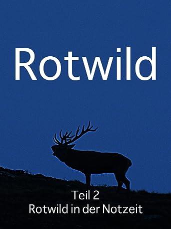 Rotwild Teil 2 Rotwild in der Notzeit