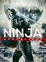 Ninja Apokalypse