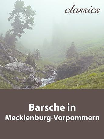 Waidwerk Classics - Barsche in Mecklenburg-Vorpommern