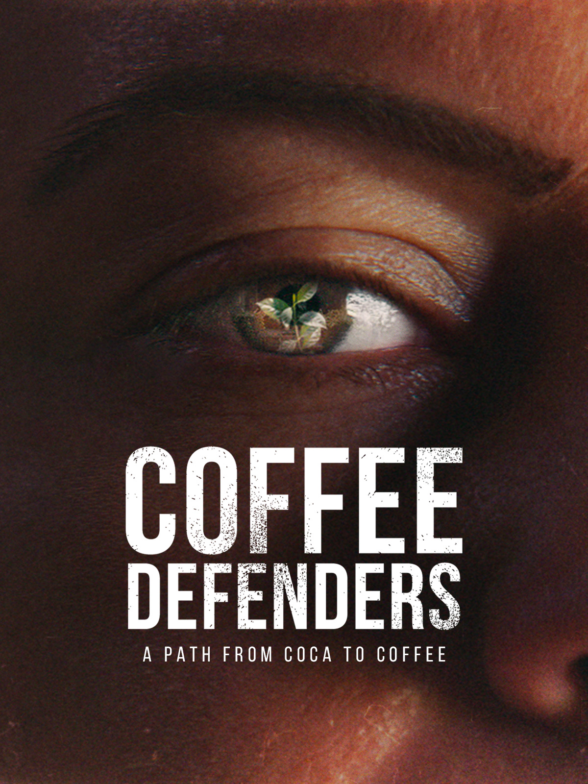 Coffee Defenders A Path from Coca to Coffee