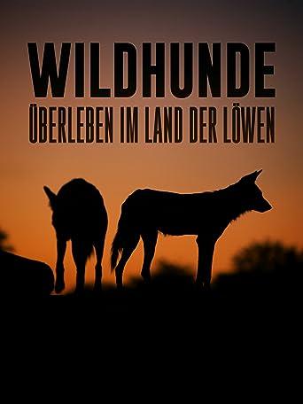 Wildhunde uberleben im land der lowen